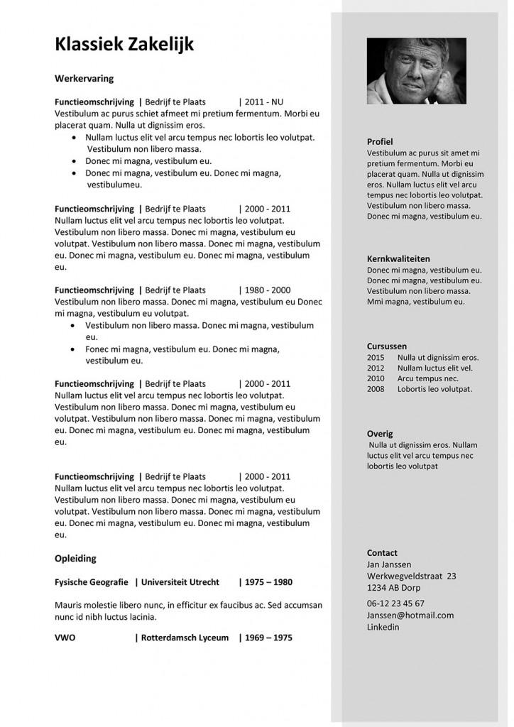 cv zakelijk CV Klassiek Zakelijk   Force at Work